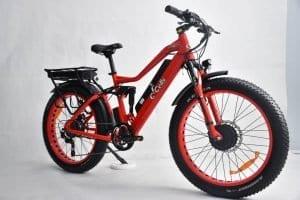 1000 watt electric bike