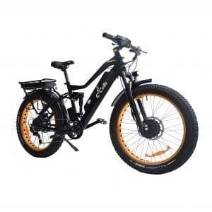 awd electric bike