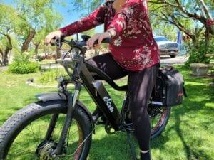 E-Cells 600 AWD Hardtail E-Bike